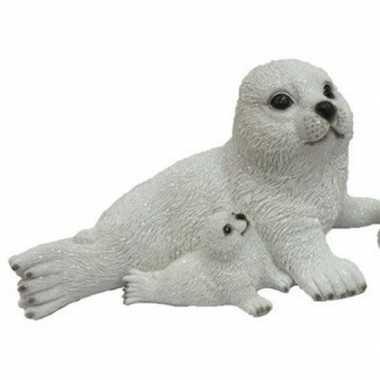 Baby dierenbeeld zeehond jong naast moeder speelgoed
