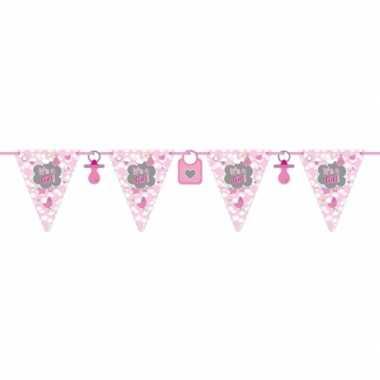 Baby roze geboorte vlaggenlijn meter speelgoed