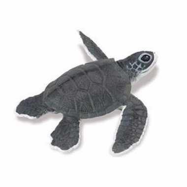 Plastic baby zeeschildpad speelgoed