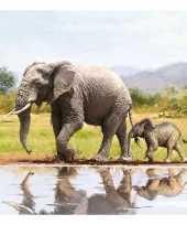 Baby olifanten servetten stuks speelgoed