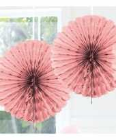 Baby roze versiering waaier speelgoed
