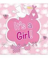 X geboorte meisje babyshower servetten roze papier speelgoed 10162864